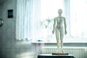 W jakie kursy dla fizjoterapeutów warto zainwestować?